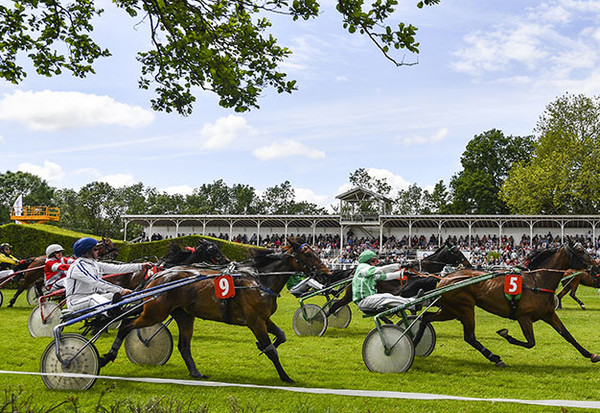 Courses hippiques de Romagné trophée vert courses trot attelé